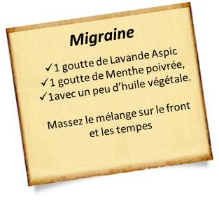 lavande aspic migraine mal de tete