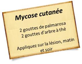 palmarosa contre mycoses des pieds et mycoses des ongles