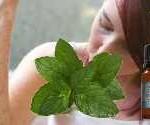 allergie cutanée et huile essentielle