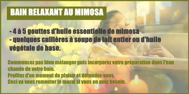 bain détente absolue mimosa