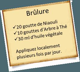 L 39 huile essentielle arbre th une indispensable pour la maison - Huile arbre a the ...