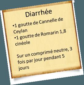 diarrhée et cannelle de ceylan