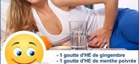 Digestion difficile : Huiles essentielles de Gingembre et Menthe Poivrée !