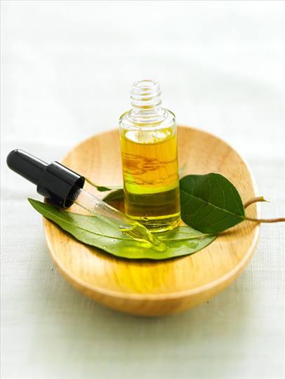 distillation des huiles essentielles