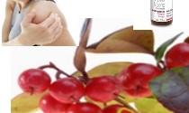 L'huile essentielle de Gaulthérie couchée : Douleurs et sport