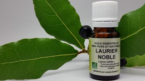 he_laurier_noble