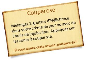 hélichryse couperose