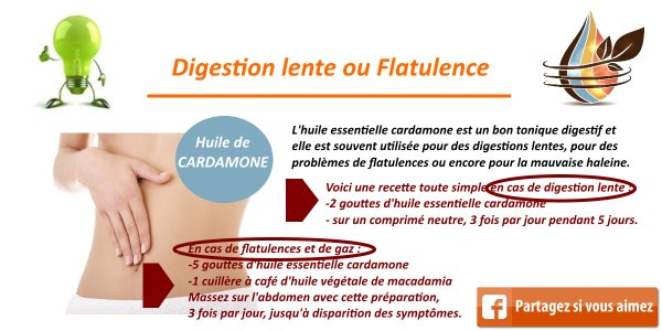 huile essentielle cardamone digestion2
