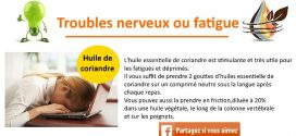 Huile essentielle de coriandre: Troubles digestifs et troubles nerveux