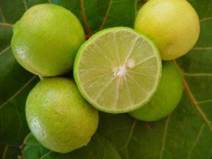 huile essentielle de citron 2 300x225 Lhuile essentielle de citron / Comment bien lutiliser ?