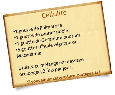 huile essentielle de palmarosa cellulite