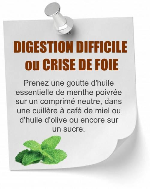 huile essentielle menthe poivrée digestion