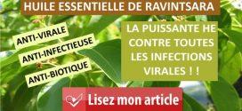 Huile essentielle de Ravintsara : L'anti-virale par excellence !