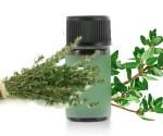 huile essentielle de thym thymol