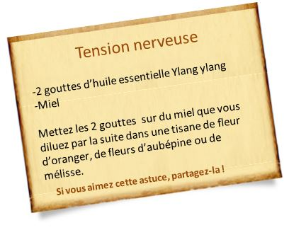huile essentielle ylang ylang tension nerveuse