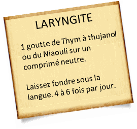 thym thujanol ou niaouli contre laryngite