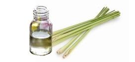 Lemongrass ou verveine citronnelle : Une huile huile essentielle à découvrir