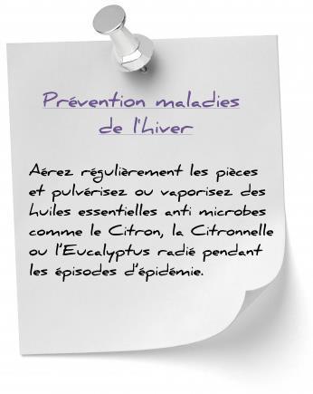 prévention maladies de l'hiver