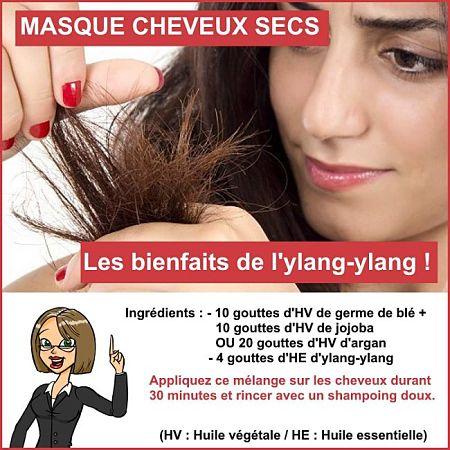 cheveux secs ylang ylang
