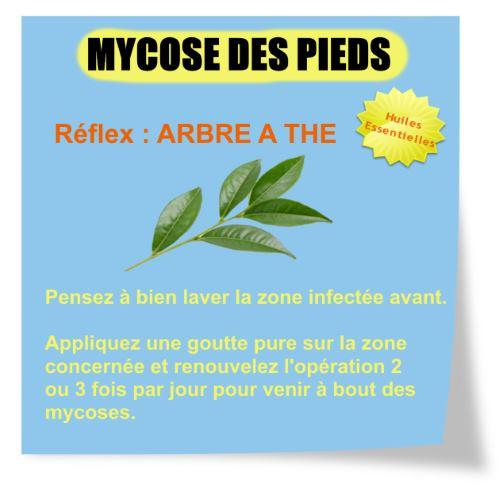 Mycoses des pieds et huile essentielle la puissance de l - L huile essentielle d arbre a the ...