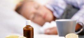 Myrte rouge: L'huile essentielle pour les encombrements muqueux.