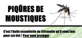 Astuce contre les piqûres de moustiques