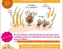 prévention poux huile essentielle