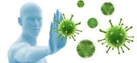 Renforcer ses défenses immunitaires avec les huiles essentielles: Mes 4 solutions simples