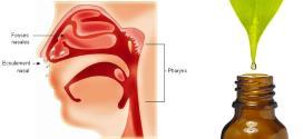 Soigner une rhinopharyngite avec les huiles essentielles