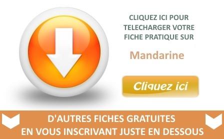 telechargement-fiche-pratique-mandarine2