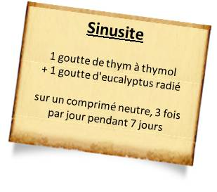 thym thymol contre la sinusite