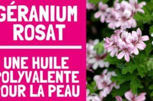 Géranium rosat : une huile essentielle polyvalente pour la peau
