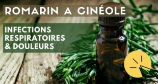huile essentielle romarin à cinéole