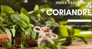 Huile essentielles coriandre digestion et troubles nerveux