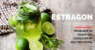 Huile essentielle estragon et digestion