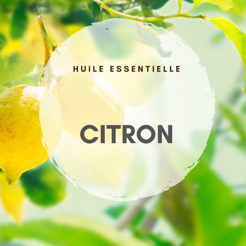 essence de citron et renforcement du système immunitaire