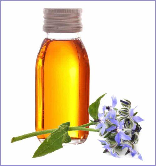 huile de bourrache anti cernes et anti âge