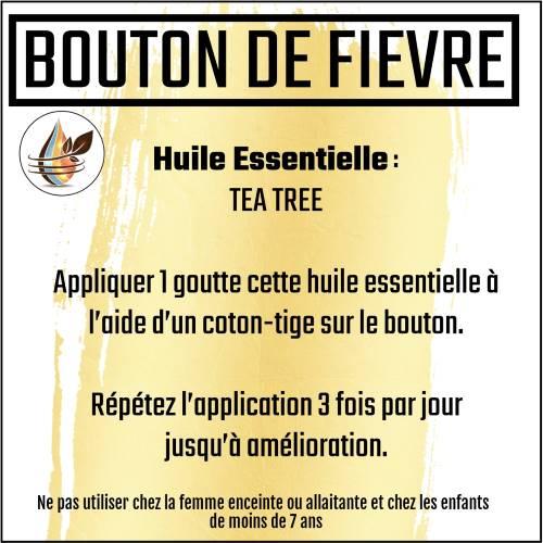herpès bouton de fièvre avec l'huile essentielle de tea tree