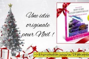 guide huile essentielle pour Noël