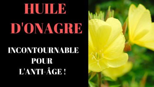Onagre : Une huile Végétale anti-âge incontournable