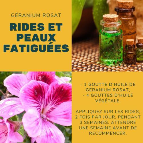 Rides : Comment utiliser l'huile de géranium rosat