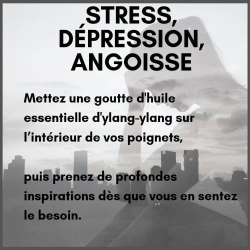 Huile essentielle d'ylang-ylang pour le stress et la dépression