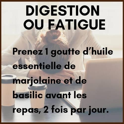 Digestion et fatigue : Utiliser l'huile essentielle de marjolaine à coquilles