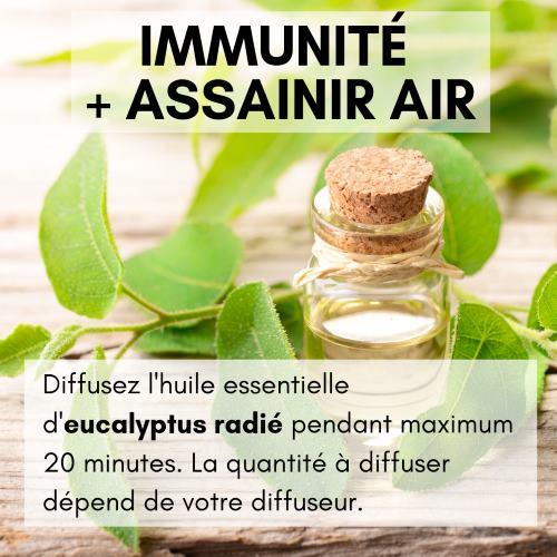 Immunité et assainir air avec l'huile essentielle d'eucalyptus radié