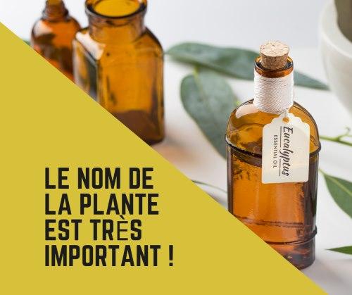 Acheter bonne huile essentielle
