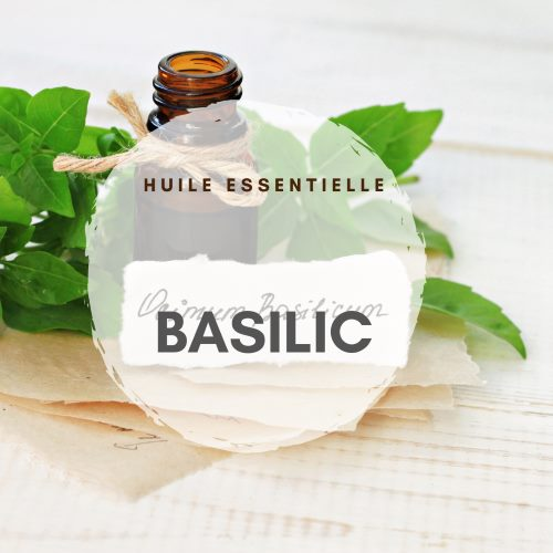 huile essentielle basilic tropical