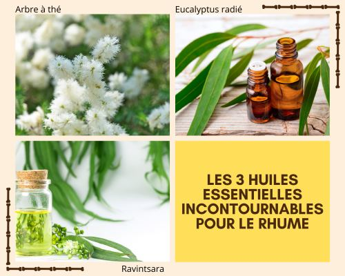 3 huiles essentielles contre le rhume