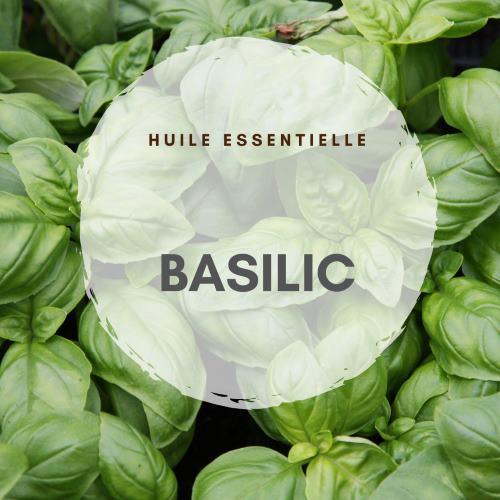 huile essentielle de basilic constipation