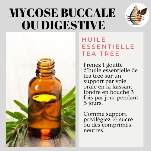 mycose digestive he tea tree