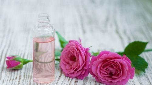 huile essentielle de géranium rosat dans un baume à lèvres
